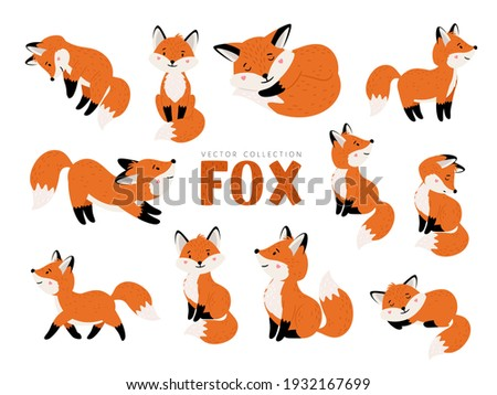 Funny fox set. Cartoon forest animals, mammals with cute emotions on faces, vector illustration of orange foxes of wildlife around logo isolated on white background