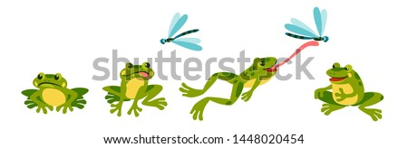 funny frog is resting sad hungry, sees a dragonfly, jumps and shoots its tongue, eats it and sits contentedly and full.