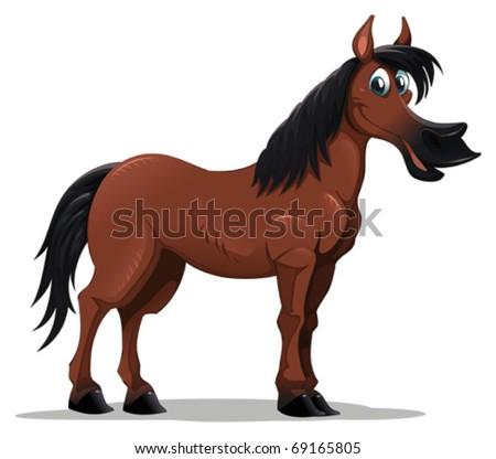 Horse Cartoon Funny horse  Cartoon and