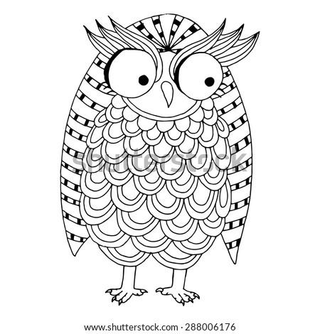 funny owl illustration