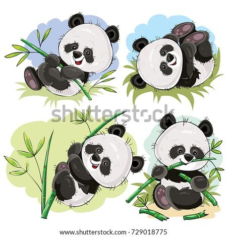 funny panda bear baby playing