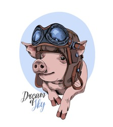 Funny Pig in a retro leather aviator helmet on a blue background. Vector illustration.