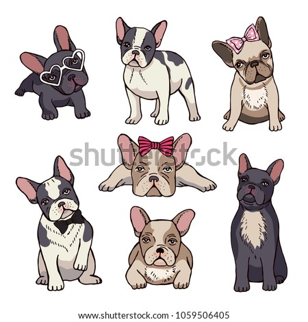 Funny puppies of french bulldog. Vector funny french bulldog, puppy cute, pet drawing sketch illustration
