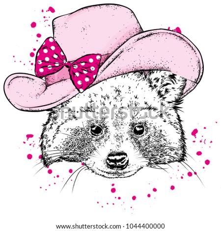 funny raccoon in a cowboy hat