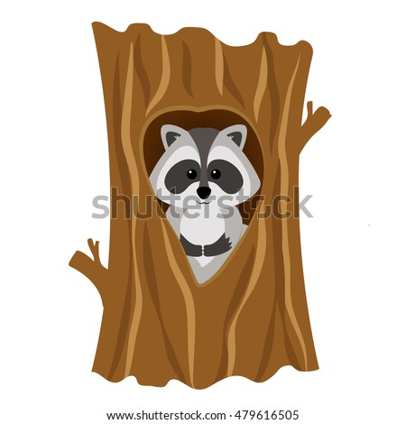 Funny raccoon inside tree in hollow, isolated on white background. Adorable vector raccoon. Cute cartoon pet. Charming baby raccoon. Foto stock ©