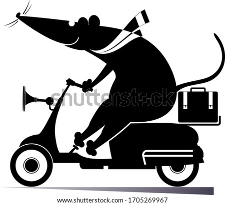 funny rat or mouse rides on the
