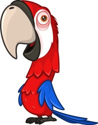 Funny red parrot with a large beak