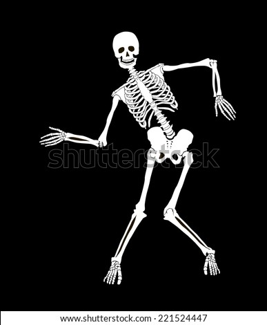 funny vector skeleton isolated