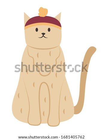 furry cat wearing funny hat