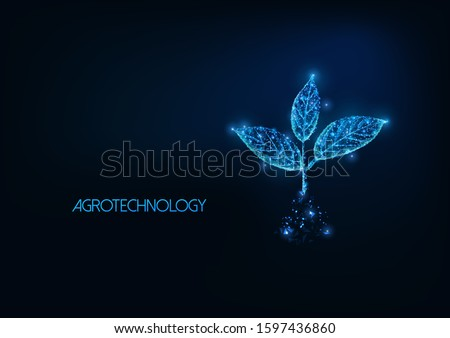 Futuristic agrotechnology, agriculture concept with glowing low polygonal plant sprout with three leaves in soil isolated on dark blue background. Modern wire frame mesh design vector illustration.