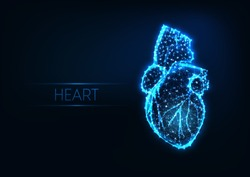 Futuristic glowing low polygonal human heart made of lines, dots, stars, triangles, light spots isolated on dark blue background. Cardiology concept. Modern wireframe design vector illustration.