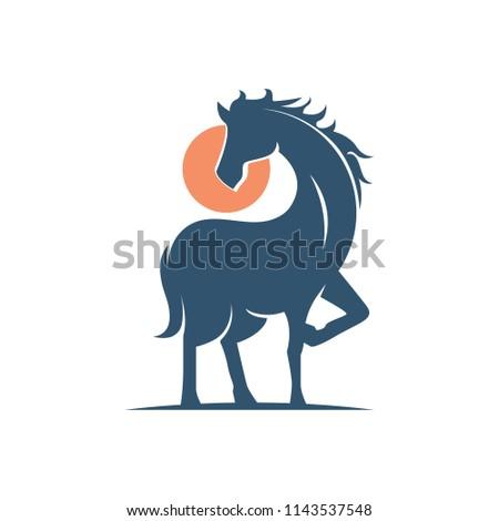 gallant elegant equestrian