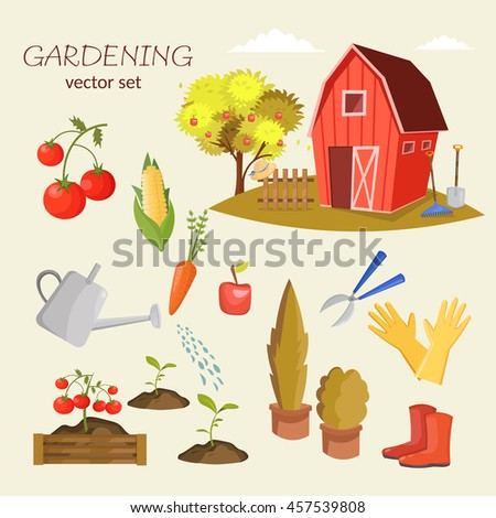 garden colorful designs