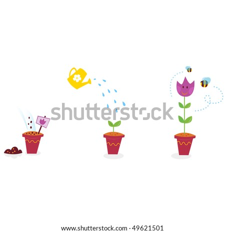 Garden flowers growth stages - tulip. The growing process of tulip in three stages. Vector Illustration.