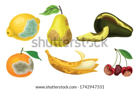 Garden Fruits with Skin Covered with Stinky Rot Vector Set Foto stock ©