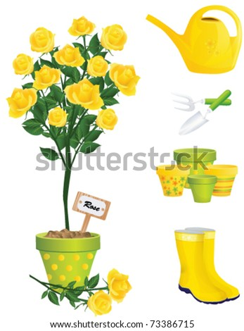 Garden Items and yellow rose, vector