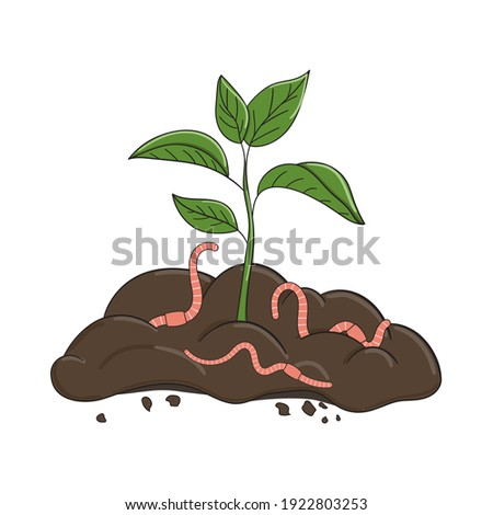 Garden organic fertilizer with worms. Ready compost pile with sprout. Recycling organic waste. Sustainable living concept. Hand drawn vector illustration. Stockfoto ©