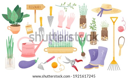 Garden tool set. Vector isolated gardening elements: potted plant, growing organic vegetables, onion flowers, seeds, herbs, gardener's tool. Cute spring set of icons or stickers of home window garden