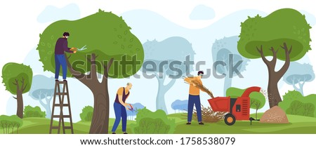 Garden work vector illustration. Cartoon flat gardener workers group people working with gardening machinery, trimming green tree, pruning bush shrubs and hedges, landscape design service background Stockfoto ©