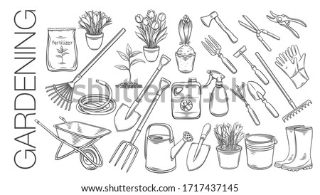 gardening tools and plants or