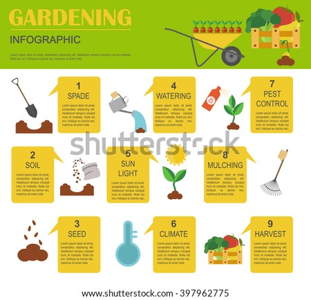 gardening work farming infographic graphic template flat style design vector illustration