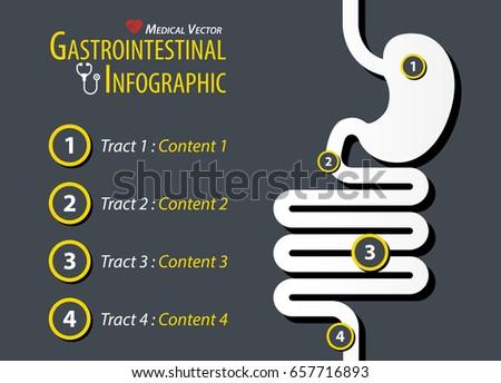 Gastrointestinal Infographic . Flat design .