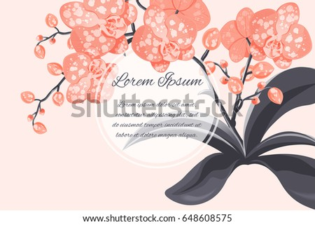 Peach flower anniversary card download free vector art stock