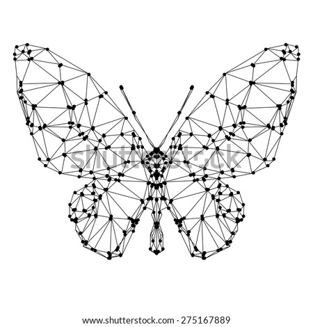 geometric butterfly with many