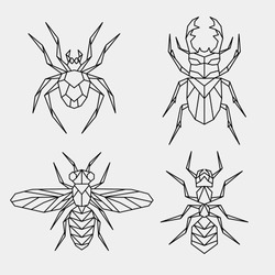 Geometric linear beetle, ant, bee, spider. Set of polygonal insects.