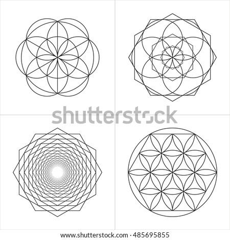 geometrical line ornaments set