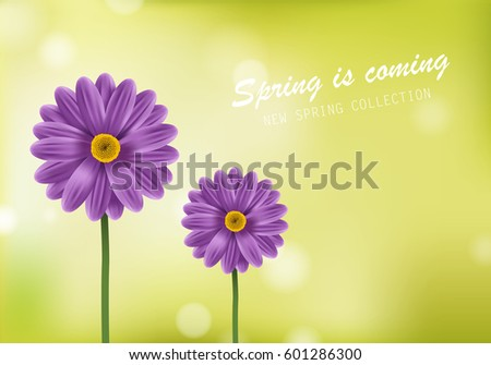 stock-vector-gerbera-daisy-flower-poster-and-spring-is-coming-lettering-for-web-site-placard-wallpaper-flyer-and