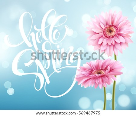 Gerbera Flower Background and Hello Spring Lettering. Vector Illustration EPS10 #569467975