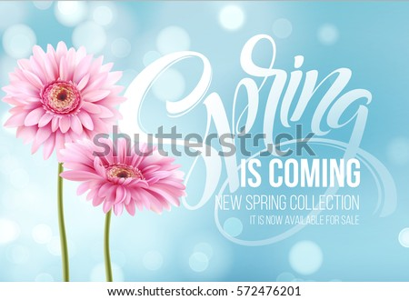 Gerbera Flower Background and Spring is coming Lettering. Vector Illustration EPS10 #572476201