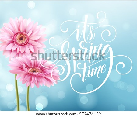 Gerbera Flower Background and Spring Lettering. Vector Illustration EPS10 #572476159