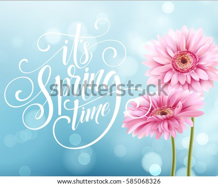 Gerbera Flower Background and Spring Lettering. Vector Illustration EPS10 #585068326