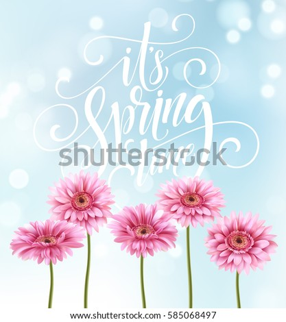 Gerbera Flower Background and Spring Lettering. Vector Illustration EPS10 #585068497