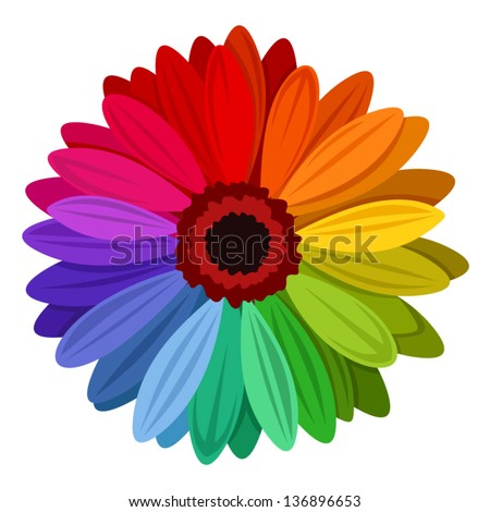 gerbera flowers with