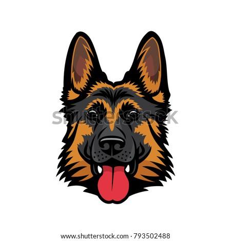 german shepherd dog   isolated