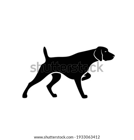 German shorthaired pointer - isolated vector illustration Stock photo ©