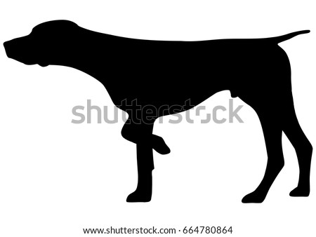 German Shorthaired Pointer Silhouette Vector