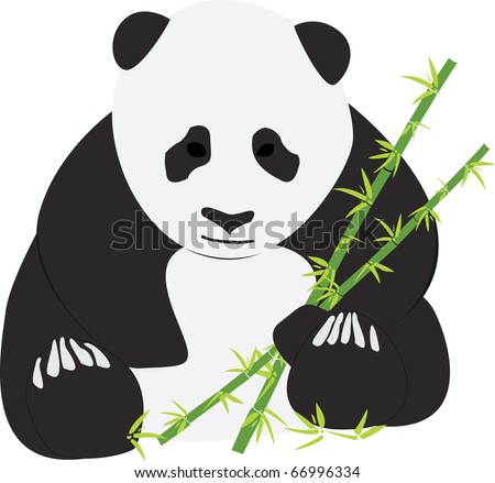 Giant Panda with bamboo shoots