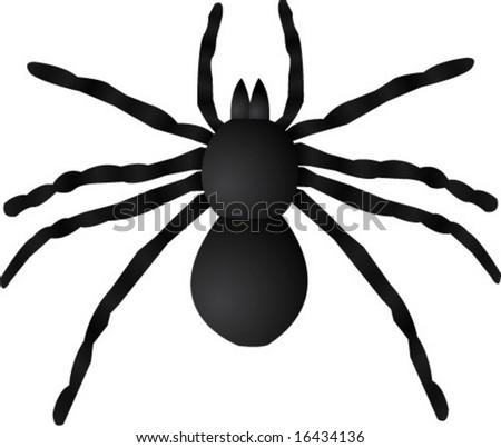 Giant Spider Vector