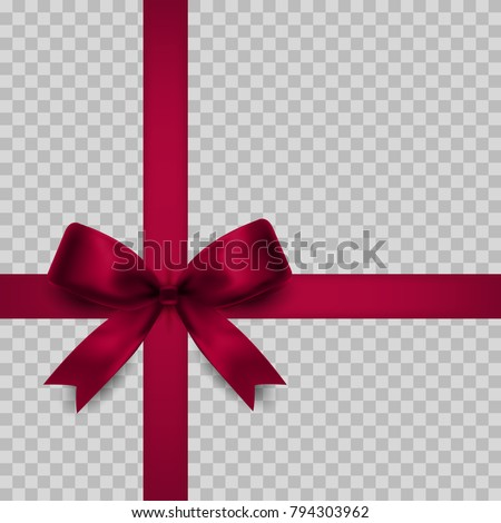 Gift bow isolated. Vector illustration.