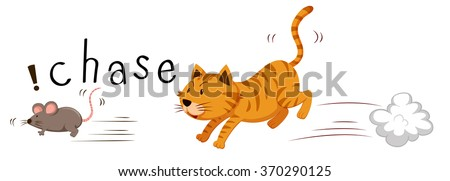 ginger cat chasing a mouse