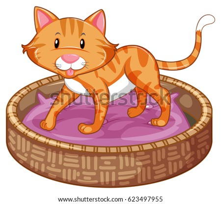 ginger cat in basket