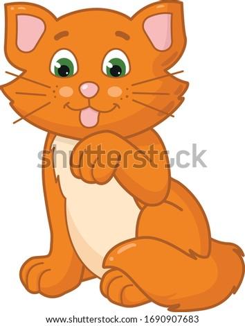 ginger kitten licking paw