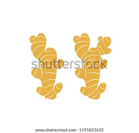 Ginger logo. Isolated ginger on white background. EPS 10. Vector illustration