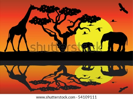 giraffe and elephants in africa near water