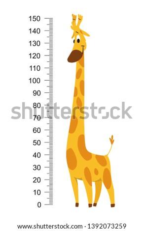 Giraffe meter wall or height chart vector illustration.