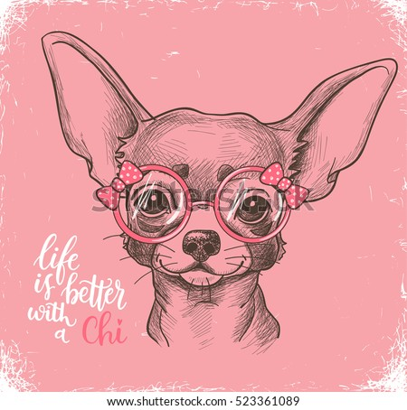 girl chihuahua illustration